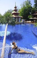 Pool at the Mandarin Oriental Dhara Dhevi Hotel in Chiang Mai, Thailand, Southeast Asia, Asia 20062010533| 写真素材・ストックフォト・画像・イラスト素材|アマナイメージズ