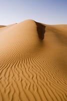 Sand dunes, Dubai, United Arab Emirates, Middle East 20062012144| 写真素材・ストックフォト・画像・イラスト素材|アマナイメージズ