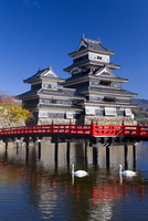 Matsumoto-jo (Matsumoto Castle), the three-turreted donjon built in 1595 in contrasting black and white, surrounded by a moat wi 20062012201| 写真素材・ストックフォト・画像・イラスト素材|アマナイメージズ