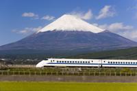 Shinkansen (Bullet train) which reaches speeds of up to 300km per hour passing Mount Fuji, blurred motion, Honshu, Japan, Asia 20062012220| 写真素材・ストックフォト・画像・イラスト素材|アマナイメージズ