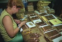 Partagas cigar factory, Havana, Cuba, West Indies, Caribbean, Central America 20062012789| 写真素材・ストックフォト・画像・イラスト素材|アマナイメージズ
