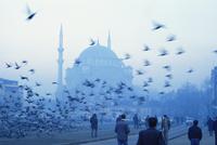 Laleli Mosque, Istanbul, Turkey, Europe, Eurasia 20062013772| 写真素材・ストックフォト・画像・イラスト素材|アマナイメージズ