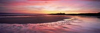Embleton Bay at sunrise, low tide, with Dunstanburgh Castle in distance, Northumberland, England, United Kingdom, Europe 20062015804| 写真素材・ストックフォト・画像・イラスト素材|アマナイメージズ