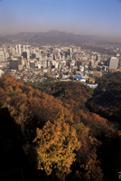 Seoul, South Korea, Korea, Asia 20062017146| 写真素材・ストックフォト・画像・イラスト素材|アマナイメージズ