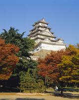 Osaka Castle, Osaka, Japan 20062018170| 写真素材・ストックフォト・画像・イラスト素材|アマナイメージズ