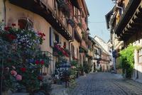 Flower-filled village street, Eguisheim, Haut-Rhin, Alsace, France, Europe 20062018893| 写真素材・ストックフォト・画像・イラスト素材|アマナイメージズ