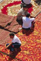 Carpet market, Tashkent, Uzbekistan, Central Asia 20062020819  写真素材・ストックフォト・画像・イラスト素材 アマナイメージズ
