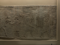 Lion hunt' a wall panel from the North Palace of Ashurbanip