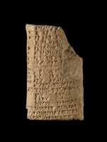 Clay tablet; nearly complete; genealogy of the Hammurapi dyn