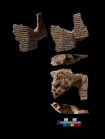 Part of a clay tablet,(cylinder), Tiglath-Pileser I, 12 line 20065000619| 写真素材・ストックフォト・画像・イラスト素材|アマナイメージズ