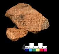 Part of a clay tablet, 4 lines of inscription, Old Babylonia