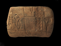 Clay tablet; record of barley; barley appears four times on