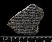 Part of clay tablet with eleven lines of inscription; Hittit 20065000704| 写真素材・ストックフォト・画像・イラスト素材|アマナイメージズ