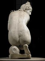 Lely's Venus, Roman