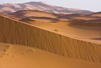 High dunes in the Sahara desert, Erg Chebbi, Southern Morocc