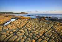 Rocks exposed at low tide on Broad Bench, Kimmeridge Bay, Is
