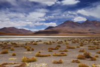 The remote region of high desert, altiplano and volcanoes ne