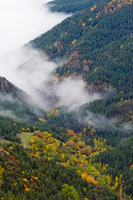 A high view of mist shrouding an autumnal valley. Cadi Natur