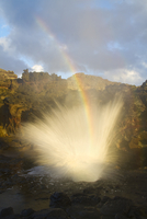 Nakalele Point Blowhole with spray and a resulting rainbow.