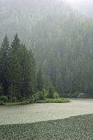 Heavy rain pouring down on lake Lago dei Caprioli surrounded