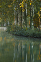 The Canal du Midi at dawn. Castelnaudary, Aude, Languedoc-Ro