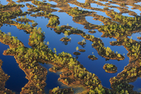 Lowland bog landscape seen from the air. South Estonia, Euro