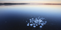 Frozen bubbles captured in ice on the surface of lake. South