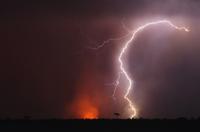 落雷と森林火災