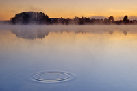 Concentric ripples in lake surface, at dawn  Haussee Feldber