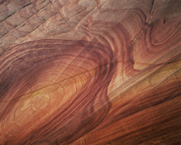 Petrified sand dunes with eroded sandstone bands in swirl patterns from mineral deposits, Paria Canyon-Vermilion Cliffs Wilderne 20070002605| 写真素材・ストックフォト・画像・イラスト素材|アマナイメージズ