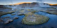 Tatio Geysers in early morning light, with steam rising from scalding hot water, coloured from mineral deposits. Atacama, Chile.