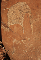 Panels of rock carving depicting African wildlife, World Heritage site, Twyfelfontein, Damaraland, Namibia