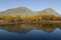 Birch trees and mountains reflected in water, autumn landscape, Rondane National Park, Oppland, Norway, September 2007