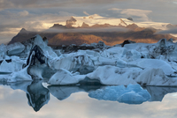 Glacier ice floating in the Jokulsarlon glacier lagoon, with Fjallsjokull in the background, sunrise, Iceland, September 2010
