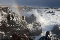 Rainbow in spray from waves beating on coast, Djupalon, Snaefellsjokull National Park, Snaefellsnes peninsula, Iceland, March 20