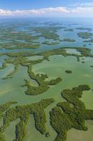 Aerial view of Everglades National Park, Florida, USA, February 2012