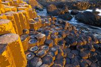 Giant's Causeway, UNESCO World Heritage Site, County Antrim, Northern Ireland, June 2011.