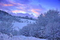 Sunset over snowy landscape, Caerphilly Mountain, Caerphilly, South Wales, UK, December 2010