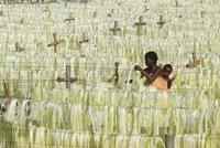 サイザルアサを乾かす女性