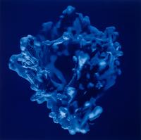 Bright blue coral