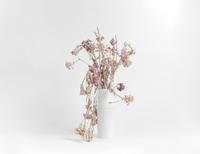 Dead pink and orange carnations, spilling over sides of white vase on white background. Studio Shot, 2009