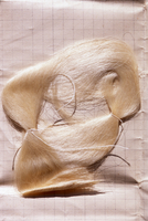 Sample of raw silk