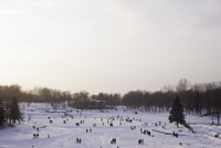 Park covered with snow. Mont Royal park. Montreal, Canada