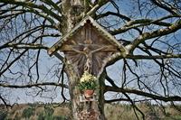 Crucifix shrine on a tree. Munich, Germany 20071009505  写真素材・ストックフォト・画像・イラスト素材 アマナイメージズ