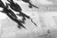 Aerial view of figure crossing road with shadow. Havana, Cuba
