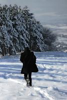 Man walking in winter landscape