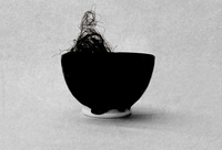 Still life of hair in a bowl