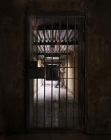 Prisoner behind a closed cell door