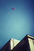 Bunch of balloons in the sky