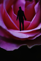 Figure standing in a red rose flower